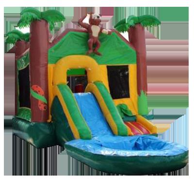 bouncing castles for rent